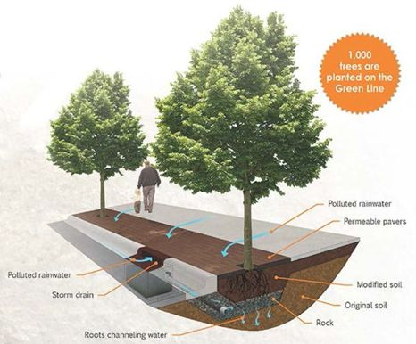 Rain as a Resource: St. Paul Innovates Shared, Sustainable Stormwater Management